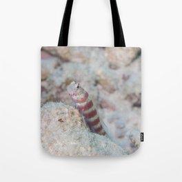 Maldivian blenny fish Tote Bag