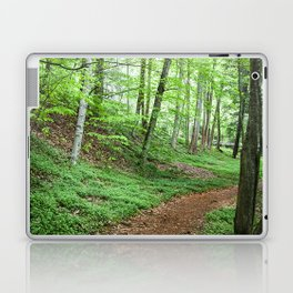Into The Woods - Woodland Spring Path Laptop & iPad Skin