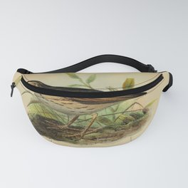 Paramo Pipit Fanny Pack