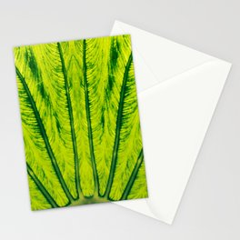 Biomimicry - Biomaterials - Symmetry Stationery Cards