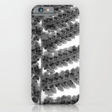 Fern Frond iPhone 6s Slim Case