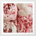 Pink Peonies by blueline