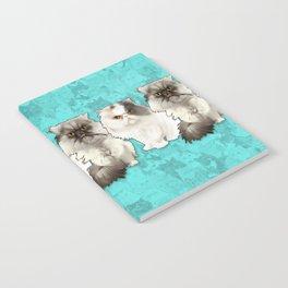 Puff N Chunk Notebook