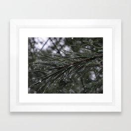 The Pines Framed Art Print