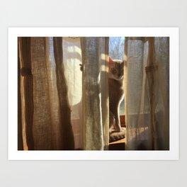 Beige Cat Art Print