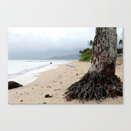 Misty Beach Canvas Print