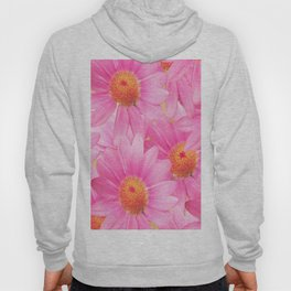 Bunch of pink daisy flowers - a fresh summer feel in pink color Hoody