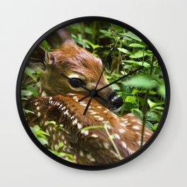 Whitetail Deer Fawn Wall Clock