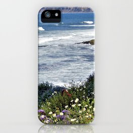 La Jolla Beauty by Reay of Light Photography iPhone Case