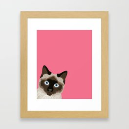 Peeking Siamese Cat - Funny cat meme for cat lovers, cat ladies gifts for cat people Framed Art Print