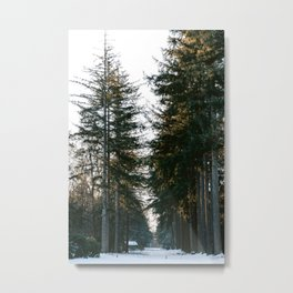 Pine forest and tiny house in the snow during golden hour | Winter travel photography fine art print Metal Print