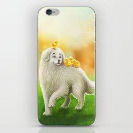 Dog and chicks iPhone Skin