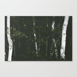Holme Woods 8 Canvas Print