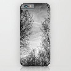 Walking Through Monochrome Trees iPhone 6s Slim Case