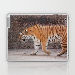 Tiger on the Prowl Laptop & iPad Skin