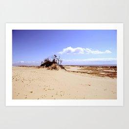 dust in the wind Art Print