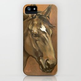 Sound Reason - Thoroughbred Stallion iPhone Case