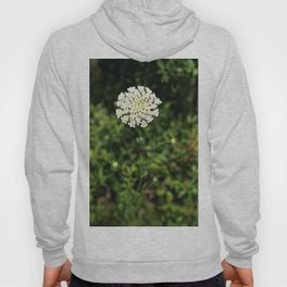 Queen Anne's Lace. Hoody