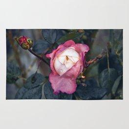 Pink Rose Poetry Rug