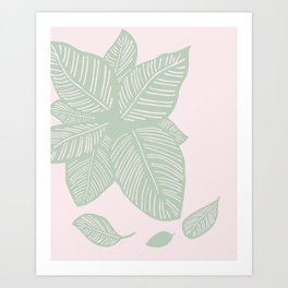 Calathea Art Print
