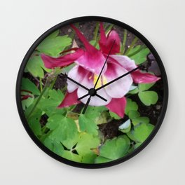 Red & Pink Columbine Flowers Wall Clock