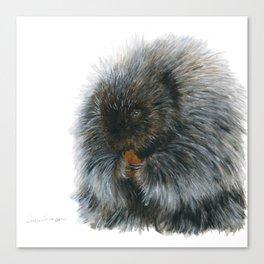 Vinnie the Porcupine by Teresa Thompson Canvas Print