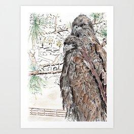 Southwest Florida Eagles Art Print