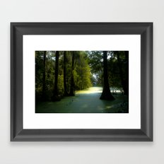 Swamp land Framed Art Print