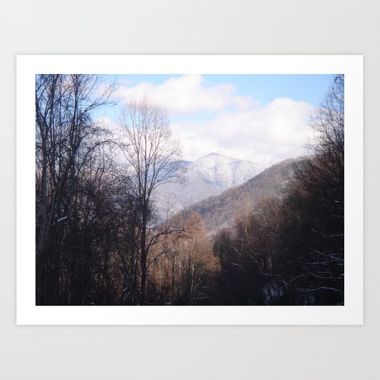 Laurel Falls Trail Art Print