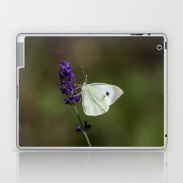 Butterfly on lavender, green blurry background Laptop & iPad Skin