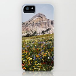 Fossil Mountain Wildflowers iPhone Case