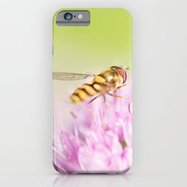 Hoverfly on Allium - Onion Flower 5 iPhone Case