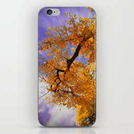 Hollow iPhone Skin