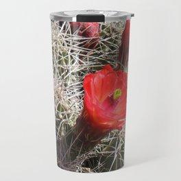 A Hedgehog Cactus Looks Sunward Travel Mug