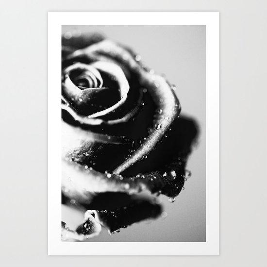 Rose BW Art Print