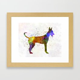 Canarian Warren Hound in watercolor Framed Art Print
