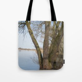 looking into the distance Tote Bag