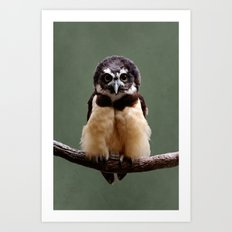 Adorable Spectacled Owl Art Print
