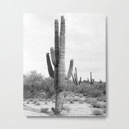 Desert Cactus / Black and White Metal Print