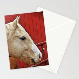 Palomino Stationery Cards