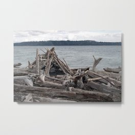 Driftwood Fort Metal Print