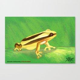 Endangered collection: Clarke's Banana Frog Canvas Print
