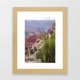 Greenery at Grand Canyon Framed Art Print