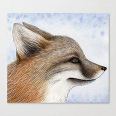 Grey Fox Canvas Print