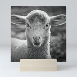 Lamb's portrait Mini Art Print