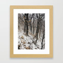 Winter at the park Framed Art Print