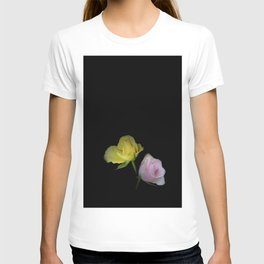 flowers on black - yellow and pink rosebud for curtains and homeproducts T-shirt