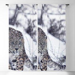 Impressive Noble Snow Leopard Patrolling Snow Covered Tundra Ultra HD Blackout Curtain