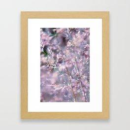 colourful grasses Framed Art Print