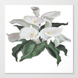 Painted Cream Calla Lilies Vector Canvas Print